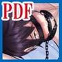耽美な鎖【PDF版】