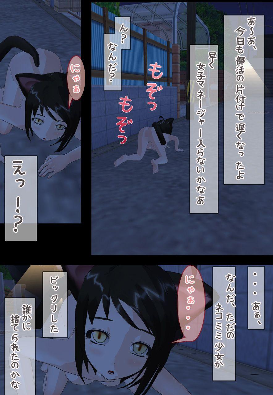 【いちごマリ凛 同人】ネコミミ少女に中出し交尾!