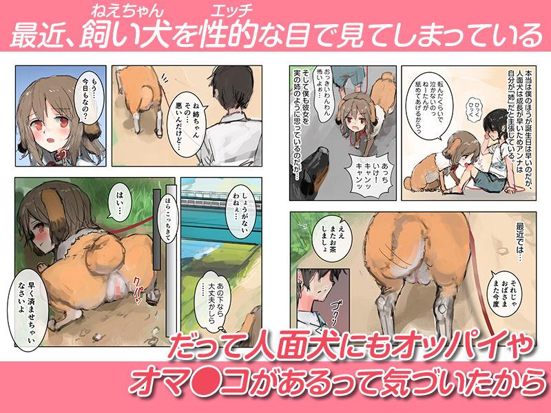 美人面犬の飼い方 【作品ネタバレ】