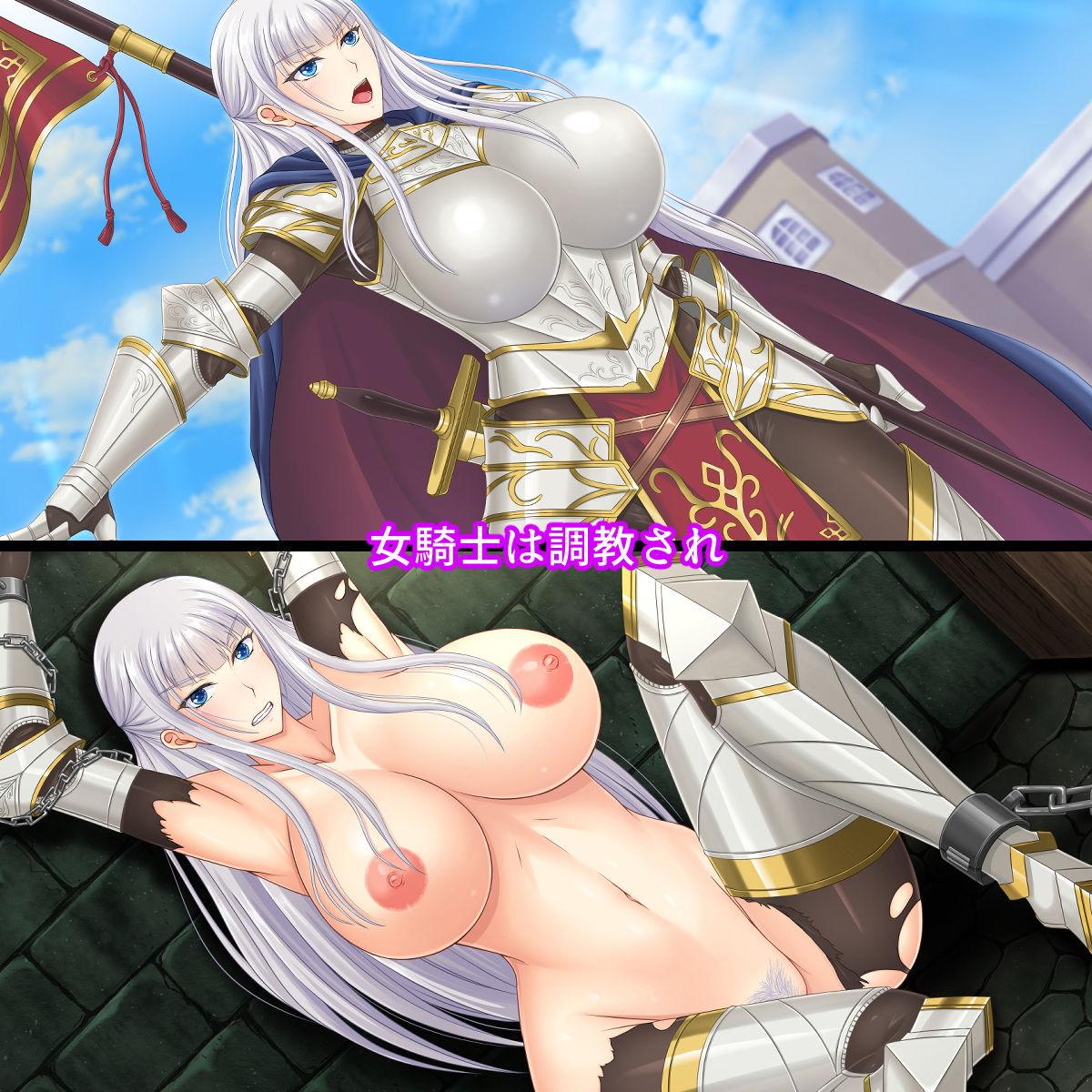 淫堕の女騎士~牝奴隷へと堕ちる女騎士団長~