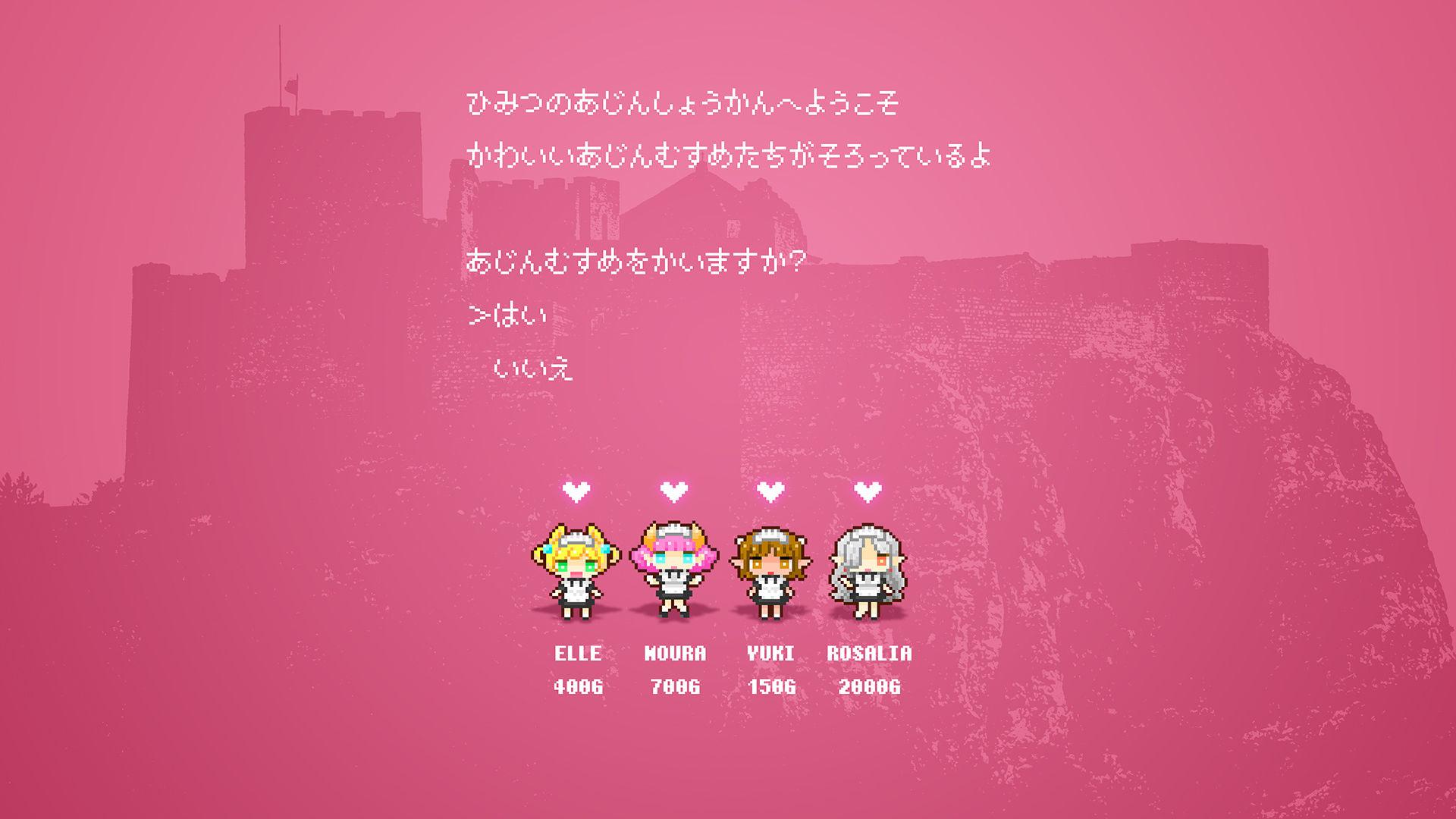 『秘密の娼館で亜人メイドを HD/少女騎士団』 同人誌