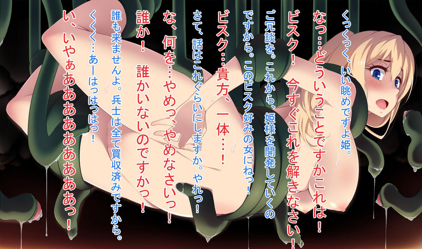 【ネロンソフト 同人】姫騎士の陵辱