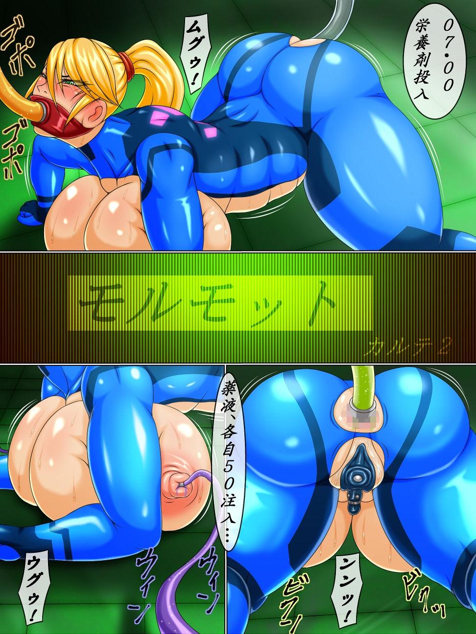 【メトロイド 同人】モルモットカルテ2