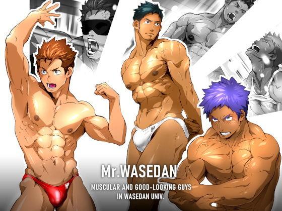 Mr.WASEDAN