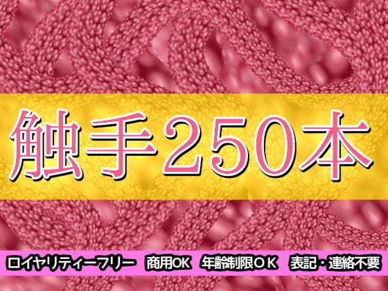 触手250本