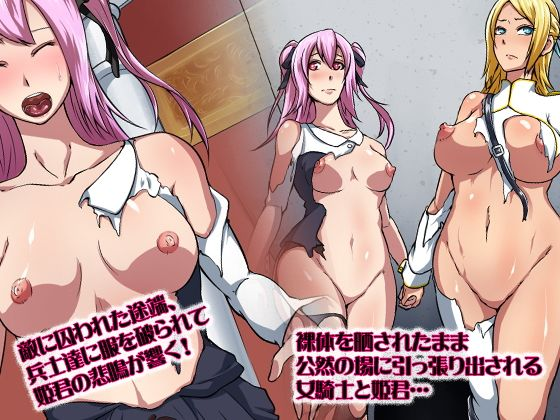 【合丼来来 同人】女騎士と姫君と鉄仮面