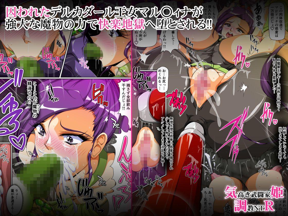 【ドラゴンクエスト 同人】気高き武闘家姫調教NTR