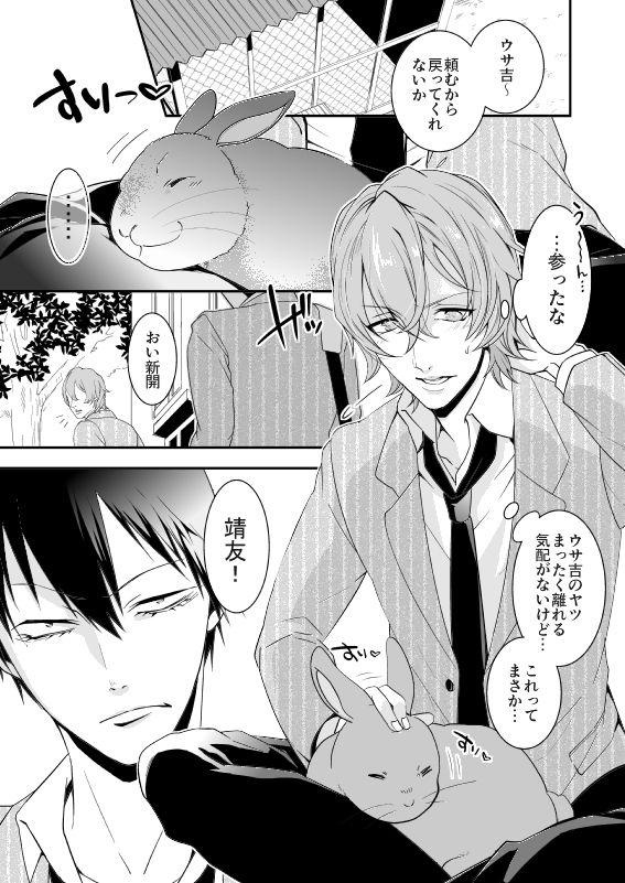 【ニート(株) 同人】Rabbitrip
