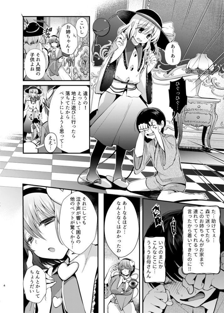【Berry!16 同人】古明地姉妹のくすぐりペット