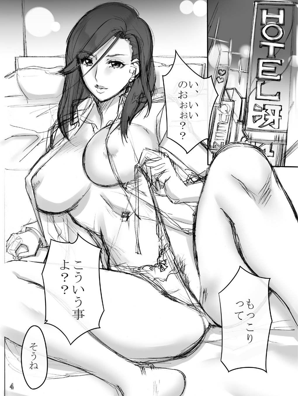 【野上冴子 同人】野上本01