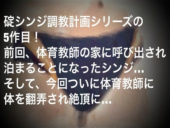 【秘密結社SYOTA 同人】碇シンジ調教計画~絶頂編~