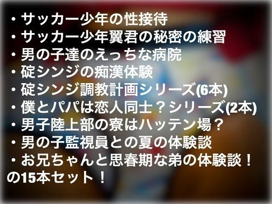 【新世紀エヴァンゲリオン 同人】【ショタ系15本】ショタ祭りパック!