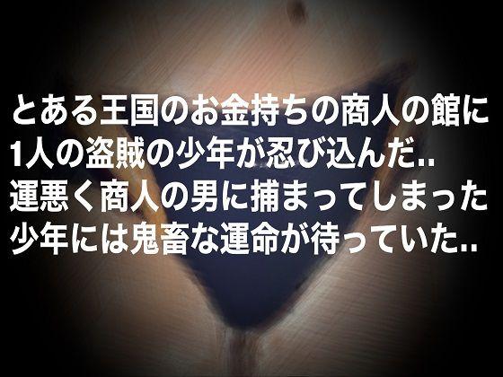 【秘密結社SYOTA 同人】盗賊少年のおしおきタイム