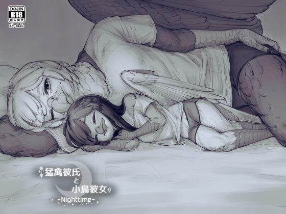 猛禽彼氏と小鳥彼女_Nighttime_