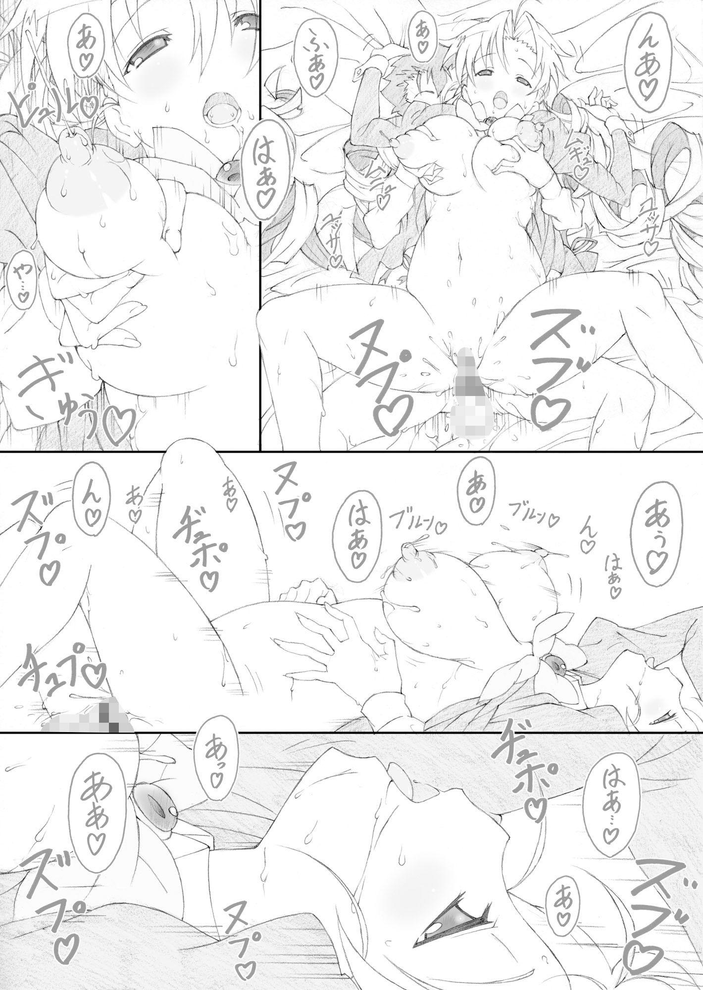 淑女図鑑16