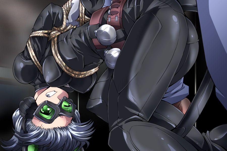 【夢かき屋 同人】女怪盗シルバーキャット