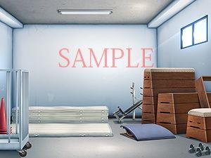 【キュキュキュのQのQ 同人】著作権フリー背景CG素材「体育倉庫教室ローアングル」