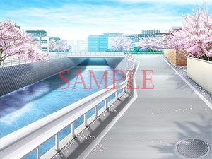 【キュキュキュのQのQ 同人】著作権フリー背景CG素材「桜のある道」