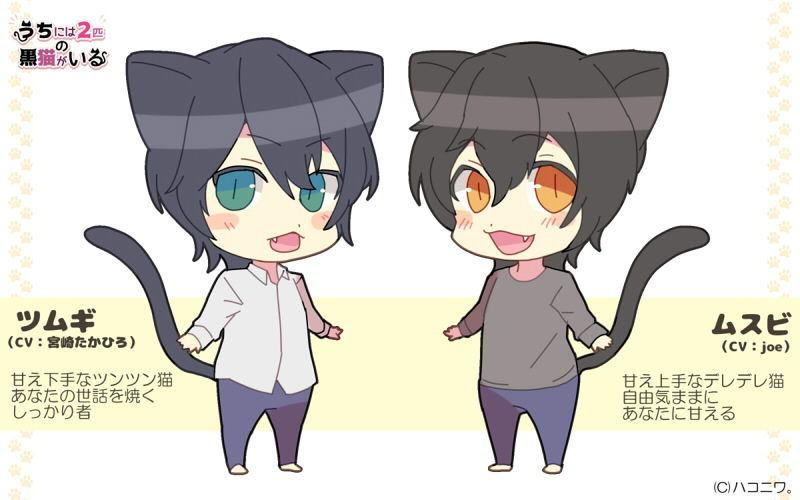【黒猫 同人】うちには2匹の黒猫がいる