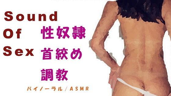 Sound Of Sex~性奴●調教!勝手にイキまくるメス豚にお仕置(ご褒美?)首絞めファック!~HQバイノーラル/ASMR/ノンフィクションエロボイス
