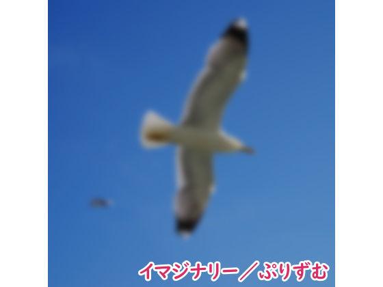 【シングル】イマジナリー/ぷりずむ