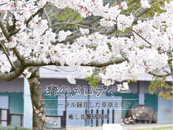 春のメロディー バイノーラル録音した草原とピアノ