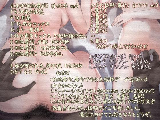 性的暴行セックス 音声2
